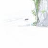 ■地上でホワイトアウト