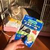 外猫さんの食べ残しを食べにくる…ナメクジ駆除をした話