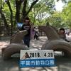 【おでかけ】動物や歴史にふれあおう!『千葉市動物公園』『加曽利貝塚』を紹介!