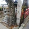 京都府木津川市の「白山宮」・・・神社仏閣めぐりシリーズ