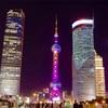 上海は昼も夜もエネルギッシュ