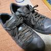 【日記】僕の新しい靴とプレミアム商品券
