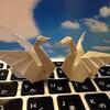 翼を広げた白鳥