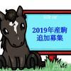 シルクHC 2020年度2歳馬追加募集 結果&ボーダー発表!(2021/04/20)
