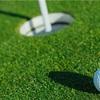 ゴルフ場の芝の種類2