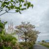 04/16(金)曇