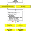 健常者で見られやすい抗核抗体~抗DFS70抗体~