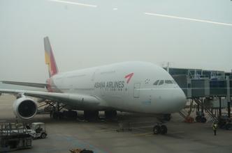 【A380】アシアナ航空OZ742便(バンコク⇒仁川)搭乗記とタイ航空ロイヤルシルクラウンジ。