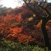秋の京都旅行2017 3日目・その2