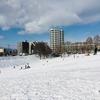 ひばりが丘の馬場公園は雪遊びの聖地