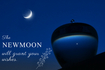 1月6日やぎ座新月☽今年最初の新月は、目標を達成させる日食新月!