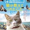 猫映画「猫が教えてくれたこと」を観てきた@吉祥寺ココマルシアター