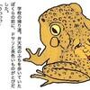 人面ガエル