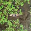 【タイ】ドローン空撮サービスが話題!「レッドロータス水上マーケット」へ自力で行ってみた