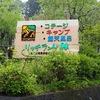 【神奈川県 愛甲郡】リッチランドキャンプ場レポ。設営はガッツリ雨ですが、新幕デビュー戦。