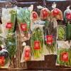 【お取り寄せ野菜】「高農園(たかのうえん)」能登島の赤土で育った野菜をリピート!