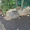 道に置いてある石