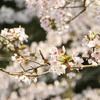 5月12日(日)は谷山で終活イベントがありますよ!