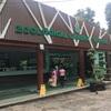【ミャンマー④】ヤンゴン動物園は超近い