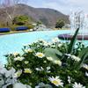 9ヶ月の赤ちゃんと箱根旅行 おすすめスポット、ホテル