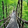 8月4日は「吊り橋の日」~ 「吊り橋理論」なんてのがあるんだねぇ~(*´▽`*)~