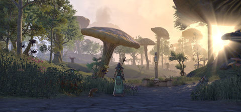 おひとり様に優しいThe Elder Scrolls Online (ESO)で孤独のタムリエルを満喫する