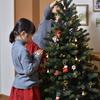 我が家のクリスマスツリーは生きている
