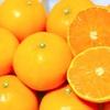 オレンジデーって知ってる??