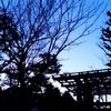【円光寺ヨガ|法華寺ヨガ】1~2月レッスンのご案内