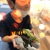 恐竜&Co.に大ハマりの息子と日記
