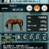 ダビマス 第31回公式BC~牝馬三冠~に向けての生産② 2021年初UMA爆誕!!!
