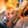 ソロストーブキャンプファイヤーがかなり秀逸だった件【solo stove campfire】【焚き火台】
