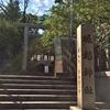 一生に一度の願いが叶う「堀越神社」の初詣