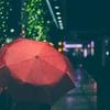 【ワイルドな方必見】雨の日に傘を差したほうが良い4つの理由