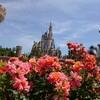 パークを代表するバラ