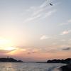 【ゆる募】4/15(日)江の島お散歩撮影会。猫撮るよ!!