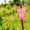 4月4日「国際地雷デー」をカンボジアで迎えて。