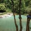 【青い水の絶景】ラオス・クァンシーの滝編