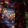 京都・花脊 - 京都の奥座敷 花脊 峰定寺の紅葉