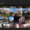 写真編集もCloudでやると楽かつ早くできる。Adobeの「Lightroom CC」が便利。クラウド対応なのでスマホからでもChromeBookからでも作業可能。