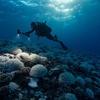 地球が「臨界点」超える危険性、気候科学者が警鐘