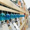 東京駅・行幸通りに響く2020個の風鈴の音「大丸有夏祭り」【東京散歩】