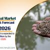 魚粉市場および量、種およびエンドユーザーによる世界予測