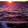 北の果て、ハートランド・フェリー…利尻島その1