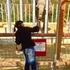 しろとり動物園に行ってきました!