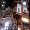 下町散歩:春真っ盛り!人形町の夜桜は綺麗でした♪