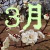 【2019-3月購入履歴】+プチ感想