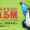 日本科学未来館「move 生き物になれる展」はとにかく子の変身の可愛さを楽しむところ