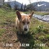 2018/03/23のトレーニング(ラン5.6km&エアウェイト)