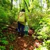 【9月の森のおさんぽ会の募集開始しました@岩出 9/10】